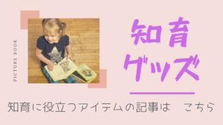 知育グッズ・絵本